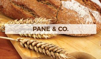 Immagine con del pane senza glutine